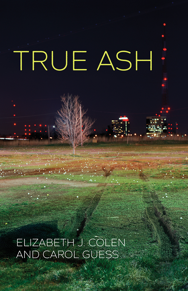 True Ash Book Jacket