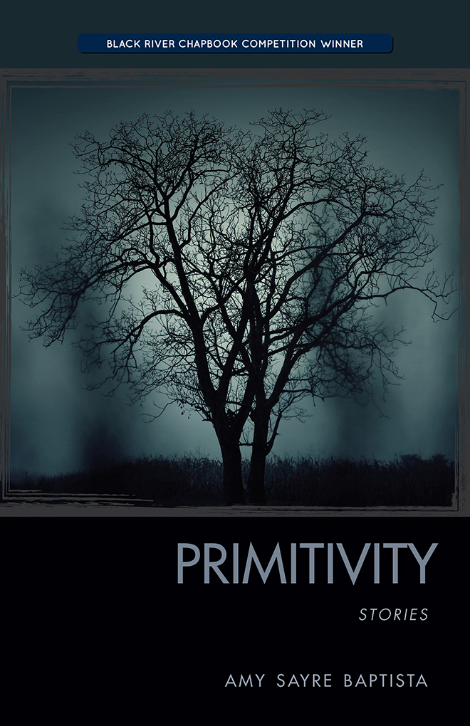 Primitivity Book Jacket